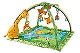 Fisher-Price K4562 - Rainforest Erlebnisdecke, Baby Krabbeldecke mit Spielzeug, Musik, Lichtern und weichem Spielbogen, ab Geburt,...