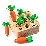 Holzspielzeug ab 1 Jahr   Baby Motorik Spielzeug für 12 Monate Jungen und Mädchen   Montessori Sortierspiel Holzpuzzle...