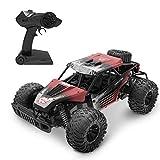 DEERC RC Ferngesteuertes Auto DE37 für Kinder,1:16 Spielzeug Car mit 2,4 Ghz Fernbedienung,Lange Laufzeit,High Speed Rennauto...
