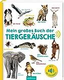 Mein großes Buch der Tiergeräusche: Mit 50 Sounds | Hochwertiges Soundbuch mit realistischen Sounds für Kinder ab 24 Monaten