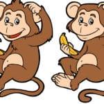 Affen Spiele - Unsere Top Empfehlungen