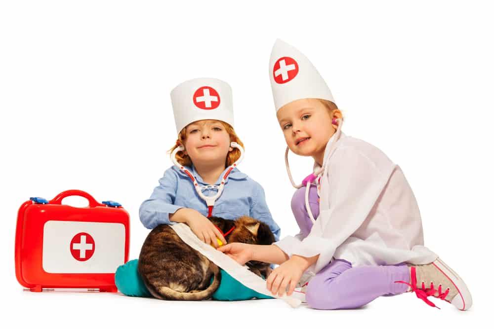 Tierarztkoffer