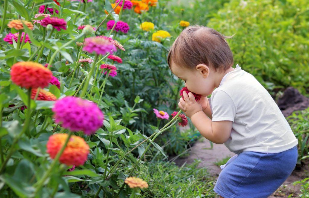 Neurodermitis und Allergien zählen zu den häufigsten chronischen Erkrankungen von Babys und Kleinkindern.