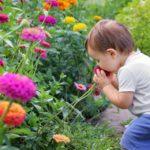 Neurodermitis bei Kindern und Babys